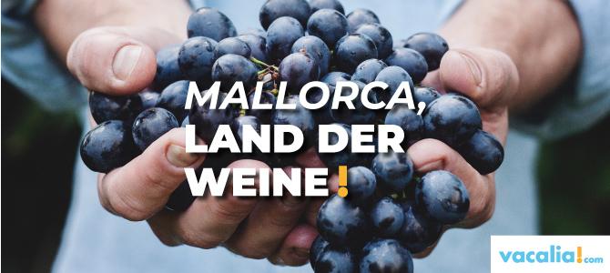 Mallorca, Land der Weine: von den Ursprungsbezeichnungen Pla i Llevant und Binisalem bis zur Serra Tramuntana – Costa Nord