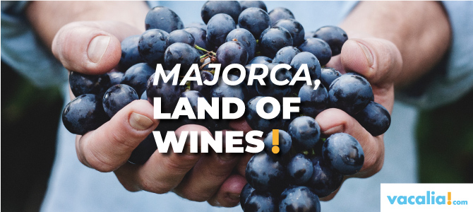 Mallorca, land of wines: from Pla – Llevant and Binissalem designation of origin to the Serra de Tramuntana – North Coast